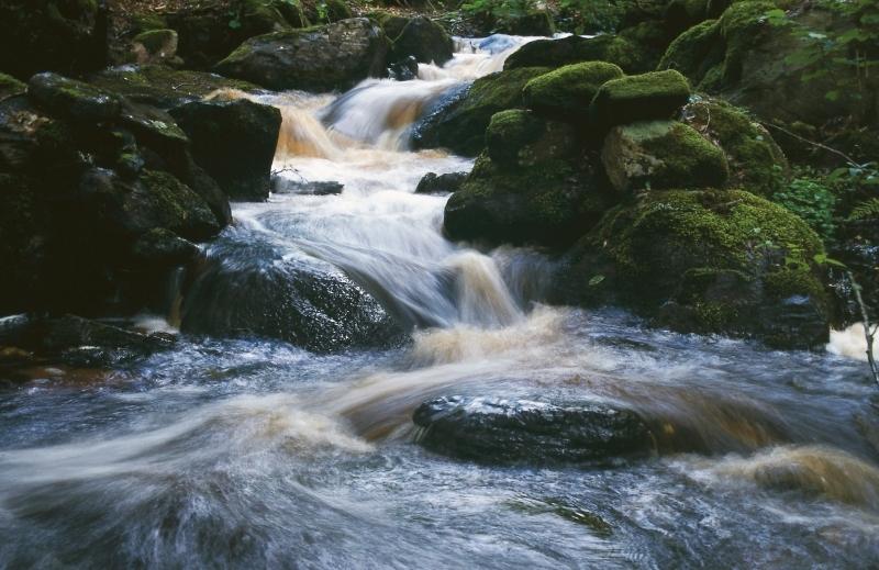 Bildresultat för fors vattendrag