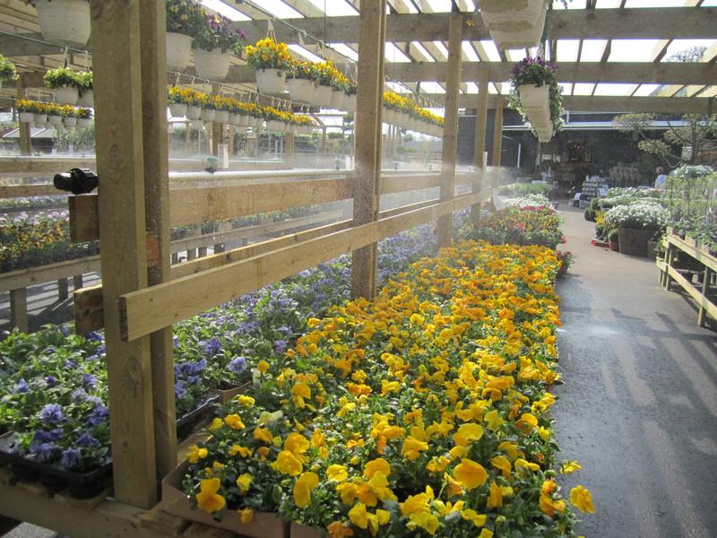 Dysbevattning på aluminiumrör, GardenCenters uteförsäljning